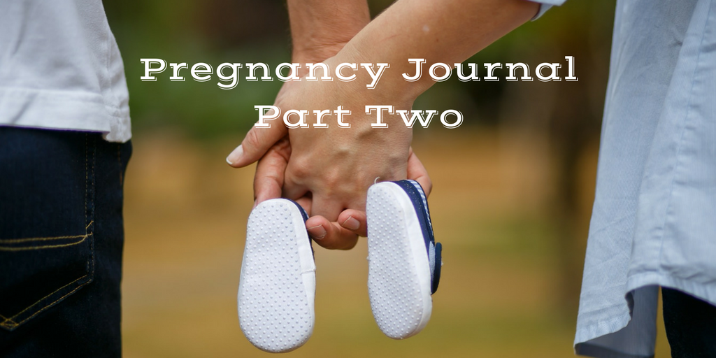 Pregnany Journal Part two Second Trimester