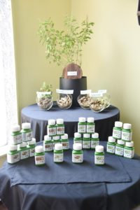 Nutrilite Traditional Herbs Launch